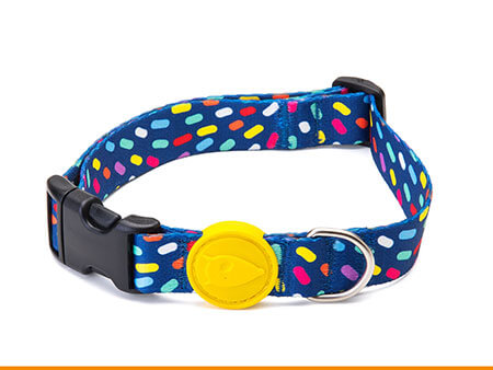 Morso® - Dog collar | COLOR INVADERS