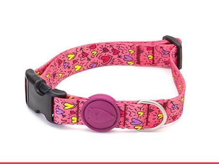 Morso® - Collare per cani | PINK THINK