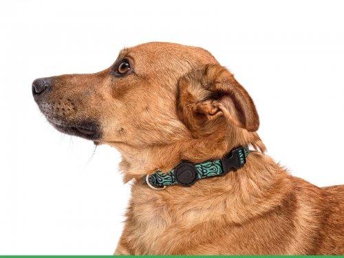 Morso® - Collare per cani | RAGE LABYRINTH