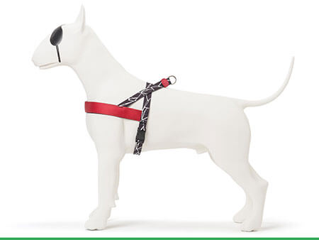Morso® - Dog harness | BROKEN SELF