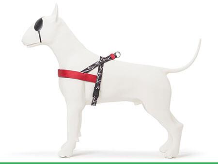 Morso® - Pettorina per cani | BROKEN SELF