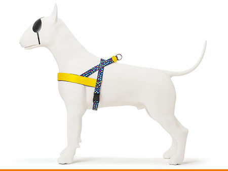 Morso® - Dog harness | COLOR INVADERS