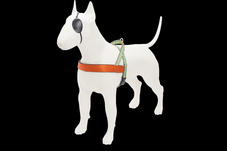 Morso® - Pettorina per cani | SQUARE GARDEN