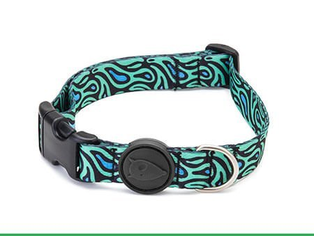 Morso® - Dog Collar | RAGE LABYRINTH