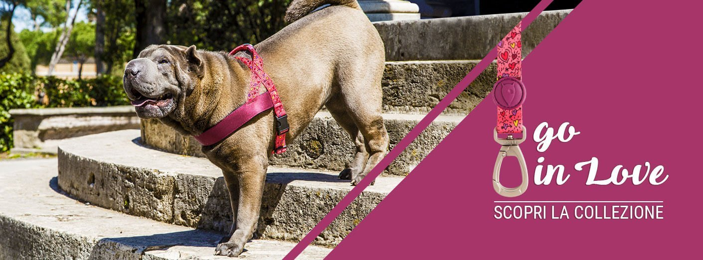 Morso® - Dog accessories Made in Italy