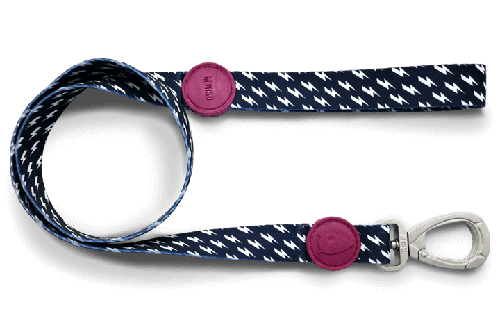 Morso® - Dog leash | POWER FLOW