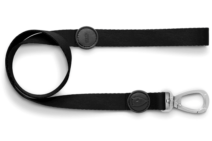 Morso® - Dog Leash | PURENESS
