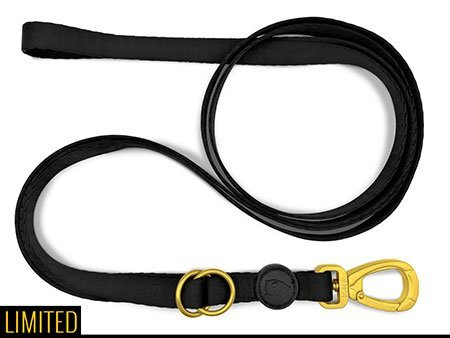 Morso® - Multifunction Dog Leash | GOLD CAVIAR