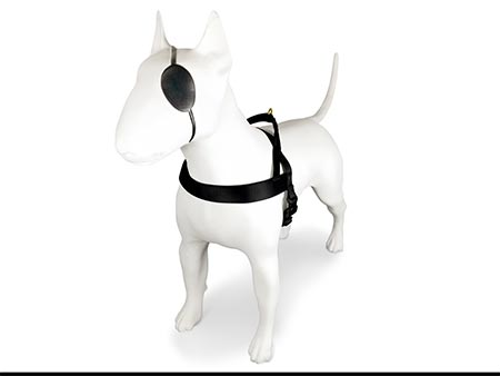 Morso® - Dog Harness | GOLD CAVIAR