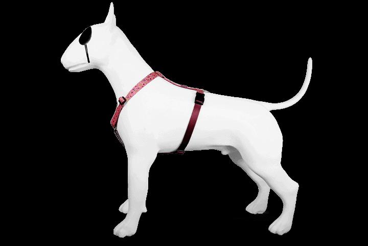 Morso® - Pettorina H per cani | PINK THINK