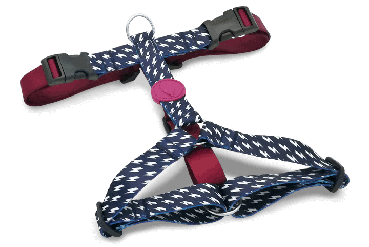 Morso® - H Harness | POWER FLOW