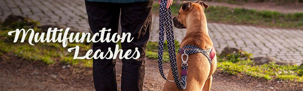 Multifunction Leashes