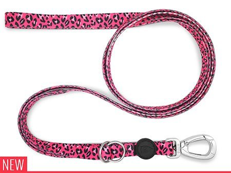 Morso® - Multifunction Dog Leash | BUBBLE LEO