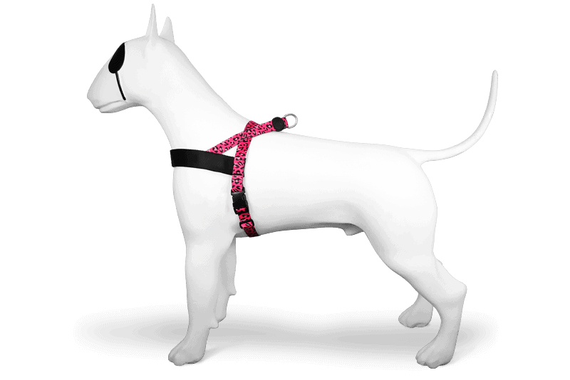 Morso® - Norwegian Dog Harness | BUBBLE LEO