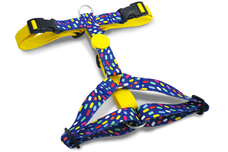 Morso® - H Harness | COLOR INVADERS