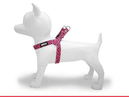 Morso® - Mini Dog Harness | BUBBLE LEO