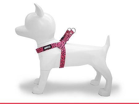 Morso® - Pettorina mini per cani | BUBBLE LEO