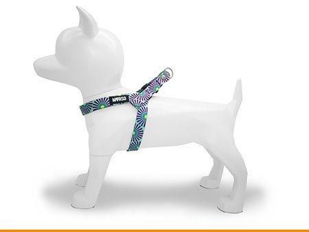 Morso® - Pettorina mini per cani | COLORED SUN