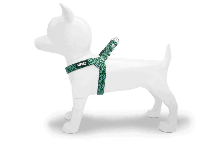 Morso® - Mini Dog Harness | RAGE LABYRINTH