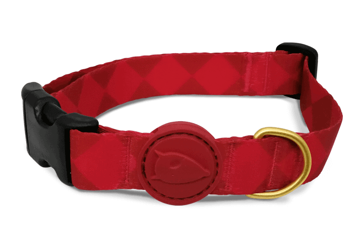Morso® - Dog collar | DIAMONDS