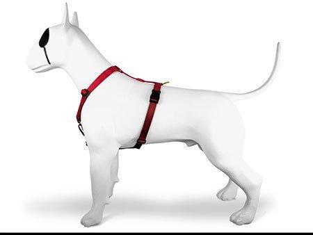 Morso® - Pettorina H per cani | DIAMONDS