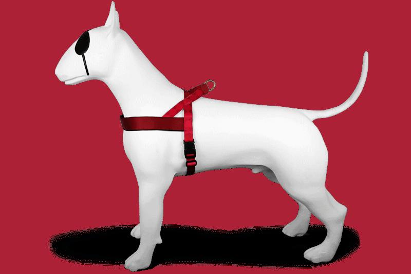 Morso® - Pettorina norvegese per cani | DIAMONDS