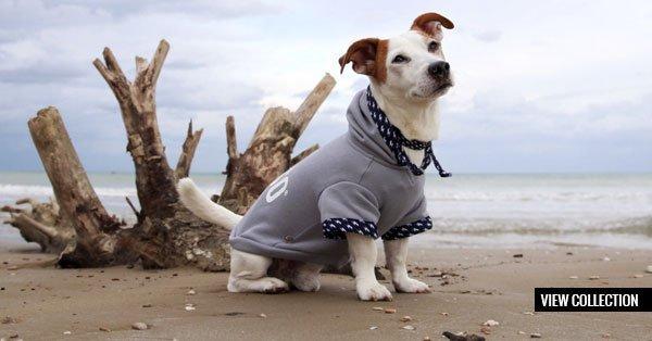 Morso® - Dog's Hoodies | VIEW COLLECTION