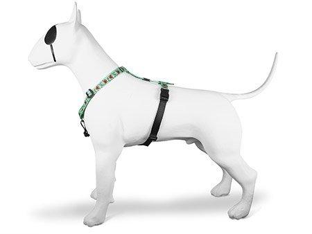 Morso® - Pettorina norvegese per cani | JOLLY ROGER
