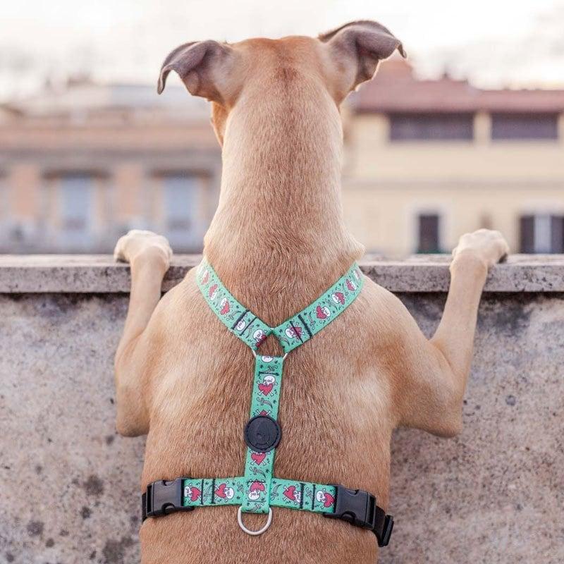 Morso® - Pettorina H per cani JOLLY ROGER