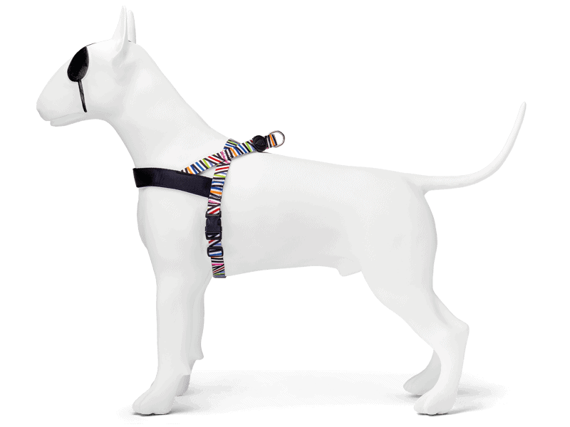 Morso® - Norwegian harness | SPAGHETTI INCIDENT
