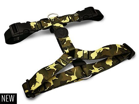 Morso® - H harness | FULL METAL DOG