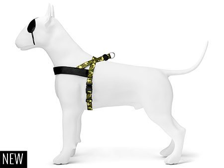 Morso® - Norwegian harness | FULL METAL DOG