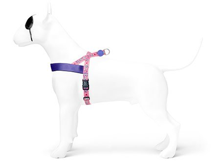 Morso® - Norwegian harness | SWEET TWEET