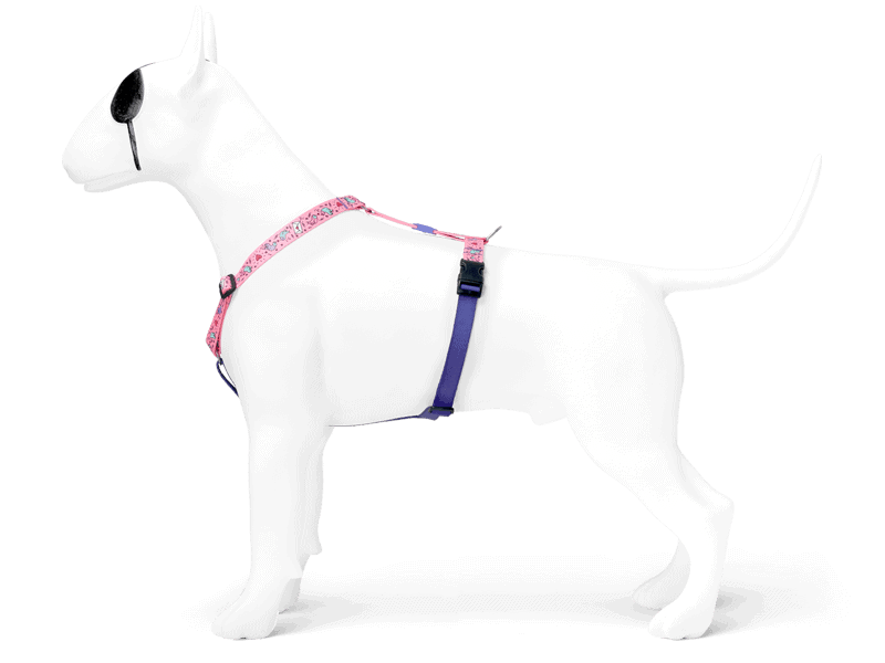 Morso® - H harness | SWEET TWEET