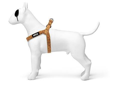 Morso® - Pettorina mini per cani | JUNGLE DRUM