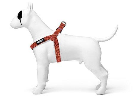 Morso® - Pettorina mini per cani | URBAN LIZARD